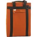 Sirius Technologies VX Mount Case Orange
